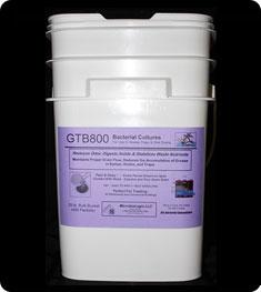 microbialogic-gtb-4