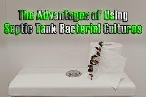 Septic Tank Bacterial Cultures